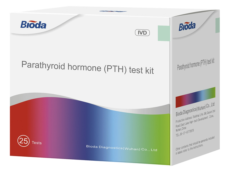 Parathyroid hormone (PTH) test kit
